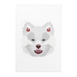 Illustration dogs face Finnish Lapphund Acrylic Wall Art