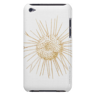 Illustration of foraminiferan shell iPod touch covers