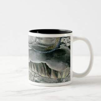 Illustrations of the Book of Job; Job's Evil Two-Tone Coffee Mug