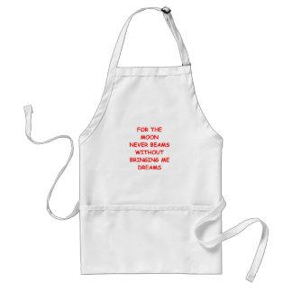 imagination standard apron