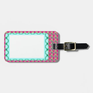 In Frame Luggage Tag w/ leather strap
