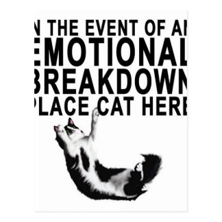 In the event of an EMOTIONAL BREAKDOWN Place CAT Postcard