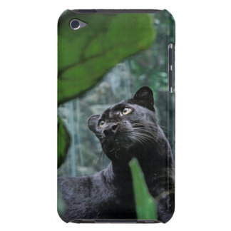 In The Jungle iPod Touch Cover