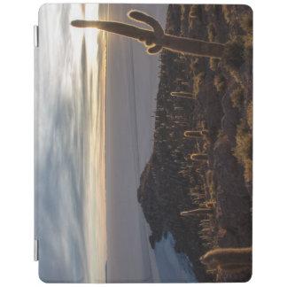 Inchahuasi Island iPad Cover