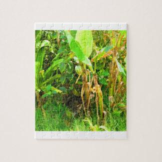 India Travels Infant Banana trees saplings Green Jigsaw Puzzle