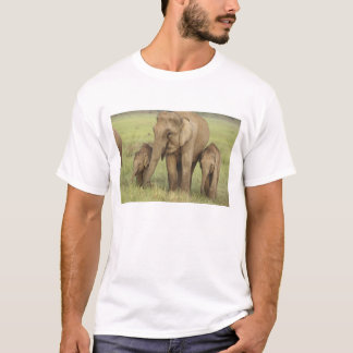 Indian / Asian Elephant and young ones,Corbett T-Shirt