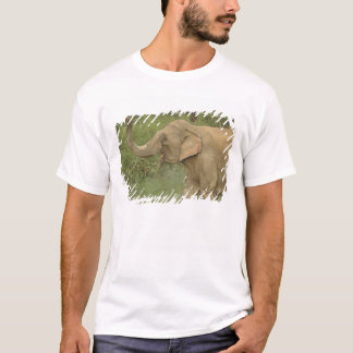 Indian / Asian Elephant communicating,Corbett 2 T-Shirt