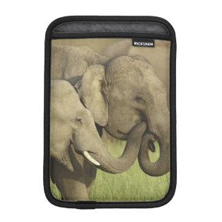 Indian / Asian Elephants sharing a iPad Mini Sleeve