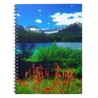 Indian Paintbrush Wildflowers Notebooks