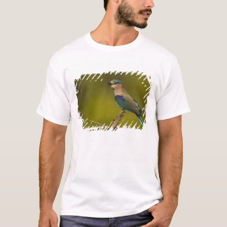 Indian Roller perched on open tree T-Shirt