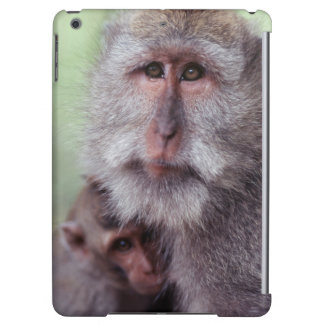Indonesia, Bali, Ubud, Long-tailed Macaque 1 Cover For iPad Air
