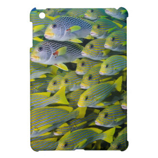 Indonesia. Schooling Fish Cover For The iPad Mini