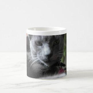 iNDYBOOM Cute Kitty Mug