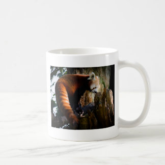 inquisitive red panda coffee mug