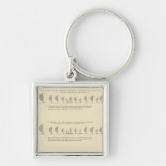 Insane, Statistical US Lithograph 1870 Silver-Colored Square Key Ring