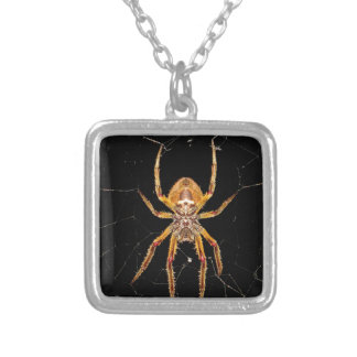 insect macro spider colombia silver plated necklace