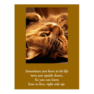 Inspirational card: Life up side down Post Cards