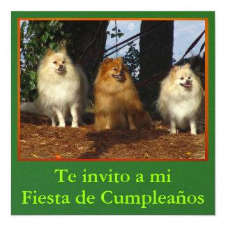 Invitación - Fiesta de Cumpleaños - Tres perros Announcement