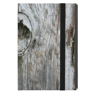 iPad Case Old Tree