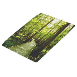 iPad Cover - Forest Path