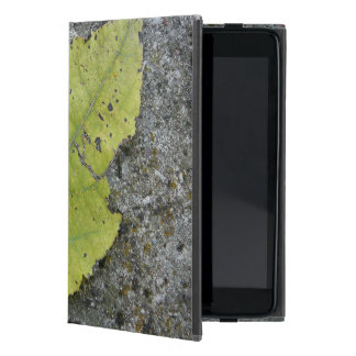 iPad Mini Old Leaf case