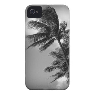 iPhone 4 Case - Oahu Palms