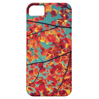 iPhone 5/5s case - Autumn bits of color