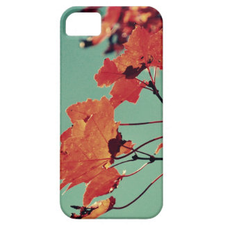iPhone 5/5s case - Autumn Rush