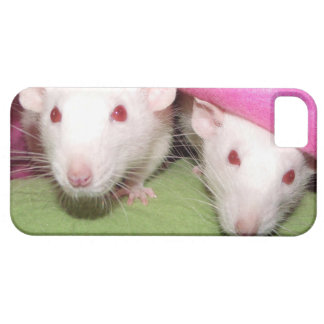 iphone 5 case - dumbo rats