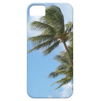 iPhone 5 Case - Oahu Palms