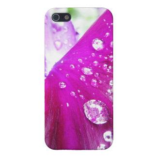 iPhone 5 Case - Petal & Dew