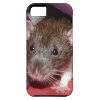 iphone 5 vibe case - dumbo rat