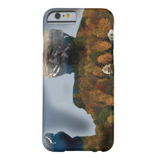 iPhone 6/6s, Barely There Bernie Sanders VT Barely There iPhone 6 Case