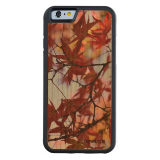 iPhone 6/6s Bumper Wood Case - JAPAN ZEN FLOWERS Cherry iPhone 6 Bumper