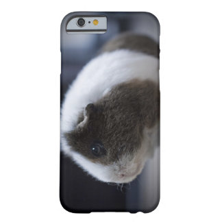 iPhone 6 case with cute guinea pig Barely There iPhone 6 Case