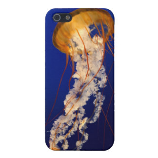 iphone cover case for iPhone 5/5S