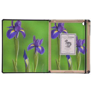 Iris Flowers Covers For iPad