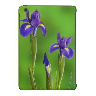 Iris Flowers iPad Mini Retina Cases