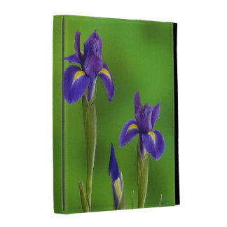 Iris Flowers iPad Folio Cases