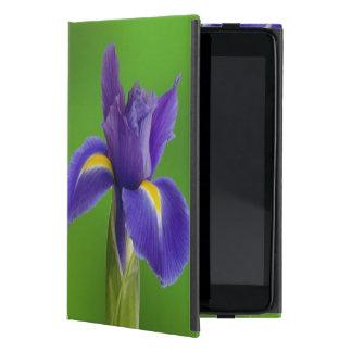 Iris Flowers iPad Mini Case