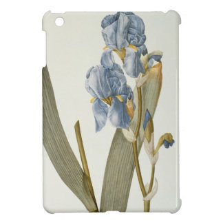 Iris Pallida, from `Les Liliacees', 1812 Cover For The iPad Mini