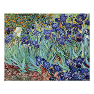 Irises by Vincent van Gogh 1898 Poster