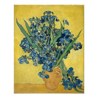 Irises by Vincent Van Gogh Photo Art