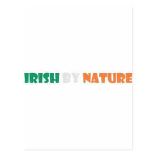 irish by nature postcard