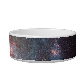 Irregular Galaxy NGC 4449 Caldwell 21 Cat Water Bowl