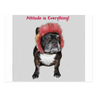 is everything cute dog attitude is everything cute postcard