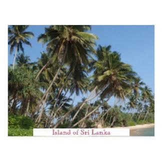 Island of Sri Lanka Vintage Travel Tourism Add Postcard