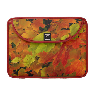 Itasca State Park, Fall Colors Sleeve For MacBooks