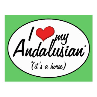 It's a Horse! I Love My Andalusian Postcard