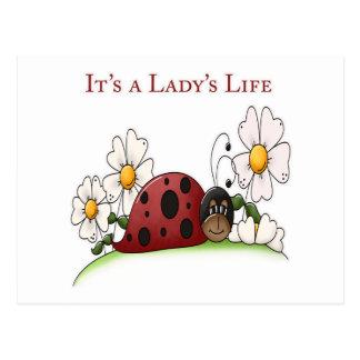 It's a Lady's Life Postcards